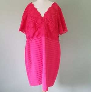 Dresses & Skirts - Adrianna Papell coral lace dress 22W nwt